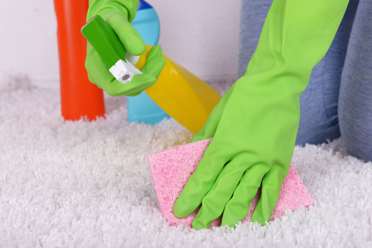 How To Get Rid Of Tough Vomit Stains From Your Carpet